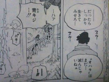 ONE PIECE KuzanAokiji(Blue Pheasant) 青キジからロビンへの言葉