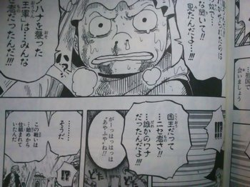 ONE PIECE LIKU KING (4).jpg