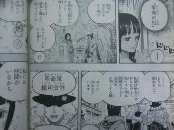 ONE PIECE KuzanAokiji(Blue Pheasant) 革命軍とロビン